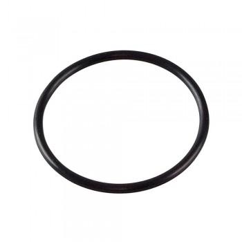 Уплотнительное кольцо 100 мм для фильтров ИТА-09 F9037