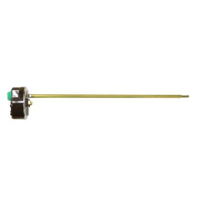 Термостат RECO RTR 80 стержневой 20 A R181501
